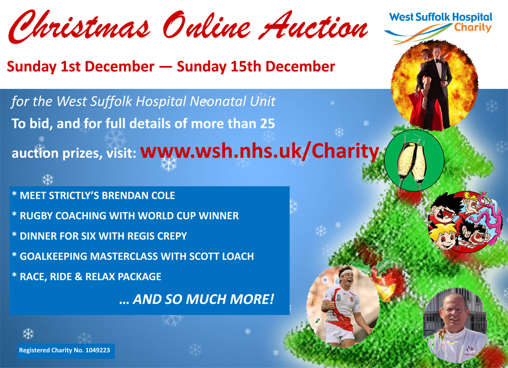 Auction Poster web Dec 2013